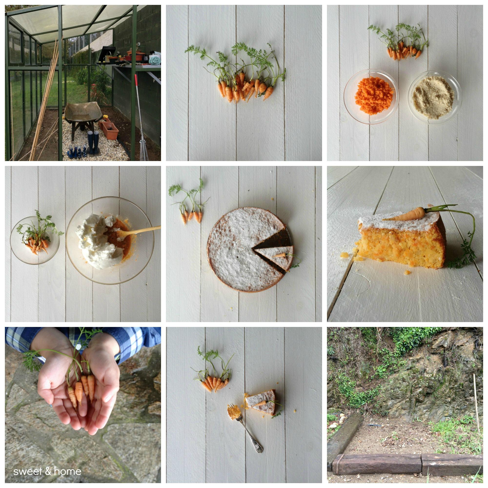 tarta de zanahorias y almendra
