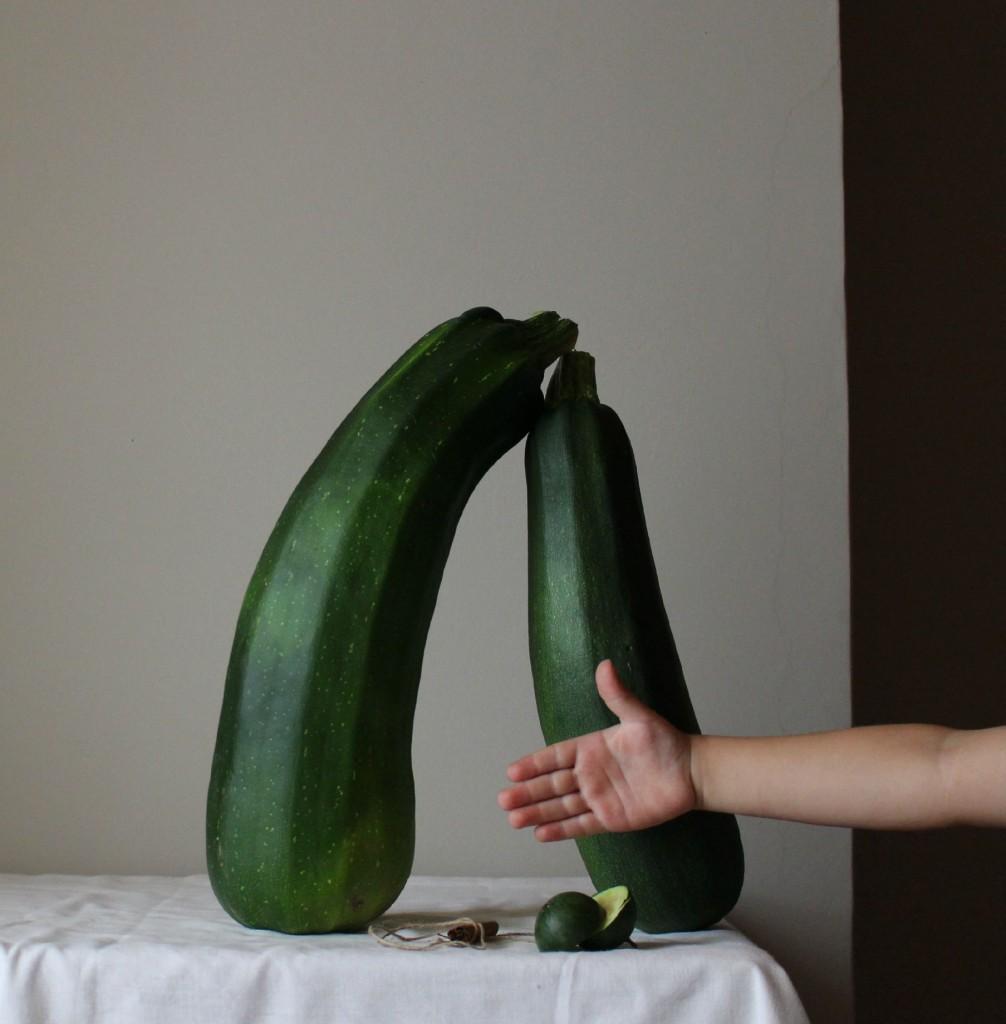 calabacines gigantes